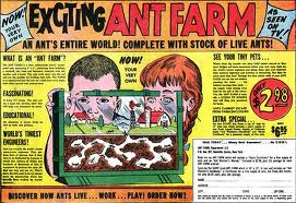 Uncle Milton's Ant Farm Advert